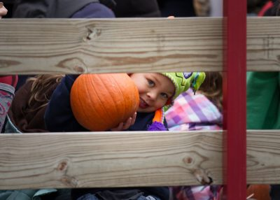 Most Jellystone Parks In Indiana Are Planning Special Weekends With Fall And Halloween Themed Activities - Yogi Bear's Jellystone Park Franchise 7